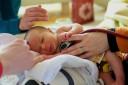 Für Babys kann eine Infektion mit Rotaviren gefährlich werden.